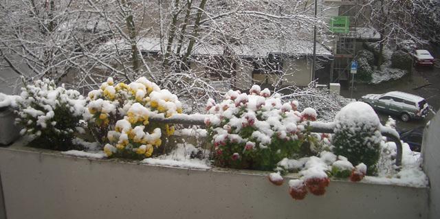 Schneebalkon